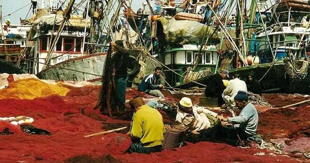 En marquant une progression significative de 48,4% : La pêche côtière et artisanale sort du creux de la vague