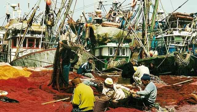 Débarquements des produits de la pêche côtière  et artisanale