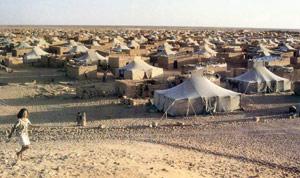 Violente répression à Tindouf d'un mouvement d'opposition au Polisario