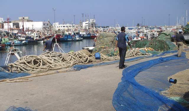 Les débarquements de la pêche côtière et artisanale en progression de 33% au 1er  trimestre 2013