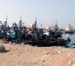 Tarfaya : Une ligne maritime pour relier le port aux Iles Canaries