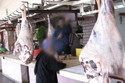 La tuberculose frappe les bovins