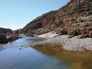Gafait : Une oasis magique à mi-chemin entre Oujda et Jerada