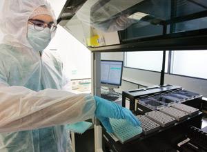 Des scientifiques recréent du sperme à partir de cellules souches