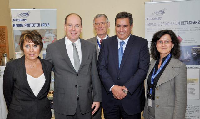 Le Maroc réitère son engagement à protéger les cétacés