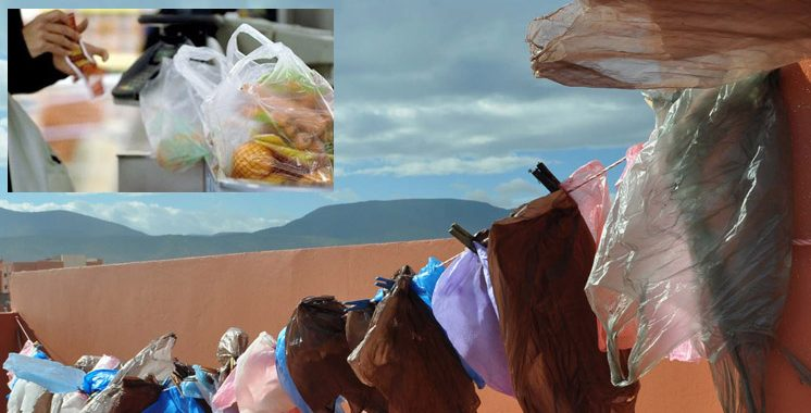 Taza : Lancement d'une campagne de destruction des sacs en plastique