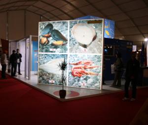 Agadir : Clôture du Salon Agadir Fish Morocco