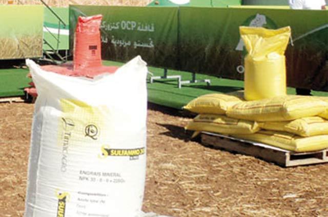 Journée d'études à Sidi Bennour sur l'utilisation  des semences sélectionnées