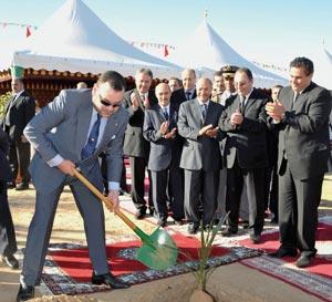 Lancement du projet de plantation d'un million de palmiers dattiers à Tafilalet