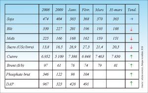 Les importations nationales de maïs progressent de 36%