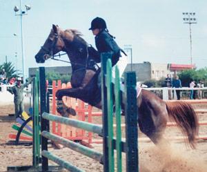 Casablanca : Concours de poney et cheval au club Le Barry