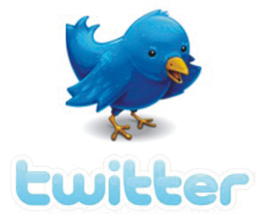 Réseaux sociaux : Twitter frôle les 200 millions de membres