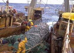 Maroc-UE : l'accord de pêche enfin signé