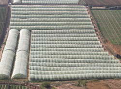 Agriculture : «Agrotech», la technologie au service de l'agriculture