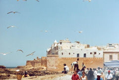 Essaouira en panne d'eau potable
