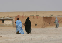 Tindouf : Une ONG US accuse l'Algérie