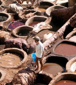 Industrie : Le secteur du cuir lustre son image