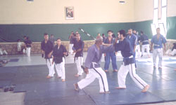 Yoseikan Dakaïto Ryu : Une discipline en vogue