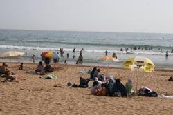 Tamaris, la plage et le net