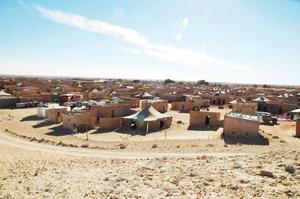 Le Polisario démasqué par un consultant international