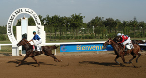 Huit épreuves à l'hippodrome de Casablanca