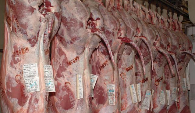 Animaux de boucherie : renforcement des modalités d'examen