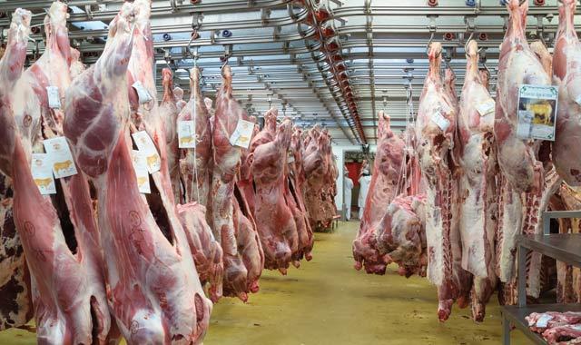 Viandes rouges : une mise à niveau pour des abattoirs plus conformes