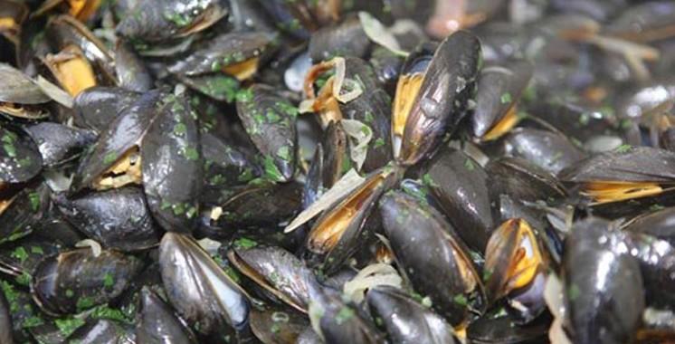 Safi: Interdiction de la récolte et de la commercialisation des coquillages