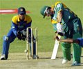 Le cricket à l'honneur