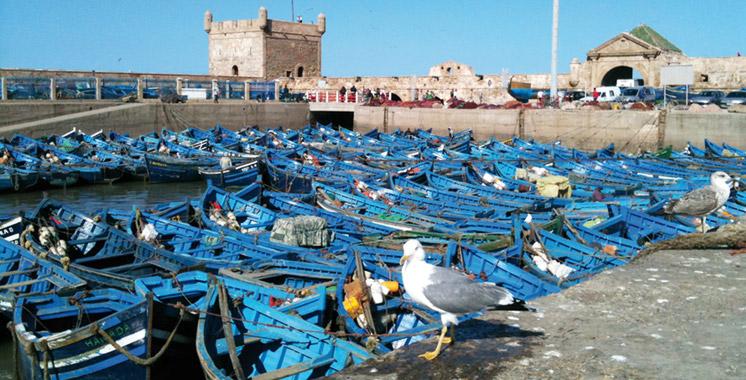 Débarquements de pêche: Plus de 47  millions de  dirhams  à Essaouira