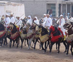 Fkih Ben Saleh : le cheval fêté sous les éclats du baroud