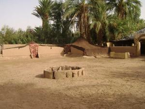 M'Hamid El Ghizlane : L'oasis sacrée d'Oum Lâalag cherche valorisation