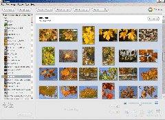 High-Tech : Un bon logiciel pour la photo numérique