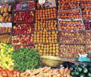 Les prix des légumes accusent une augmentation de 27,9%