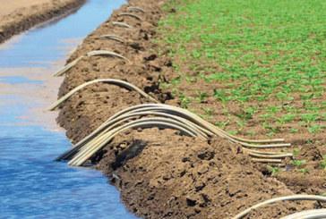 Agriculture : La campagne sauvée