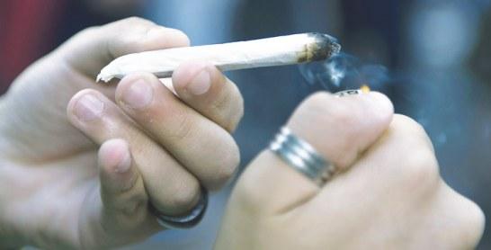 Canada : Le gouvernement projette de légaliser le marijuana