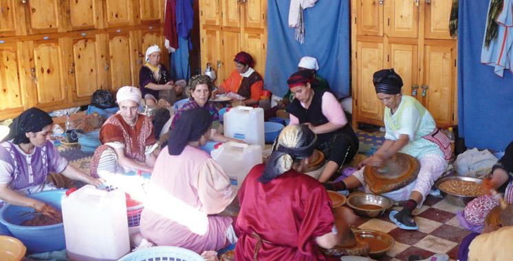 Coopératives : Les perspectives de développement débattues à Laâyoune