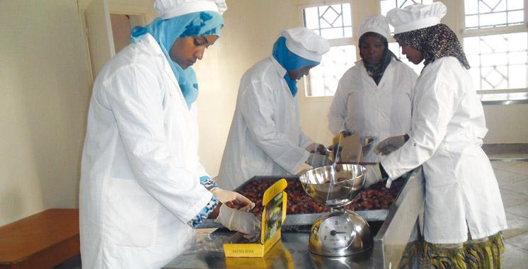 Coopératives agricoles : Vers la création d'une fédération africaine