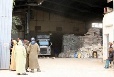 Rehamna : Distribution de 120.000 quintaux d'orge subventionnée au profit des éleveurs