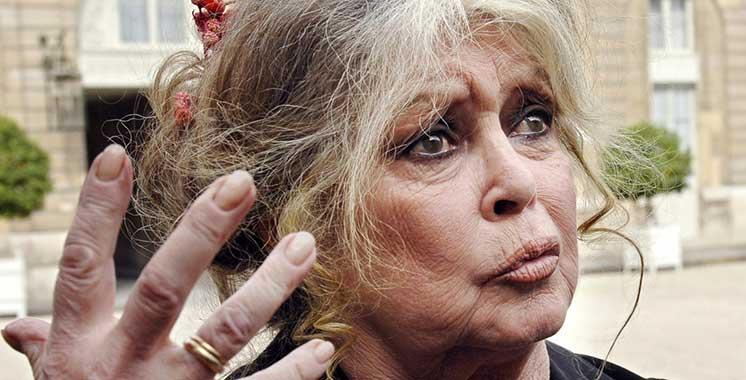 Exécution de chiens au Maroc : Brigitte Bardot réagit