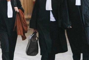 Les avocats donnent 2,5 millions de dirhams au Fonds anti-virus