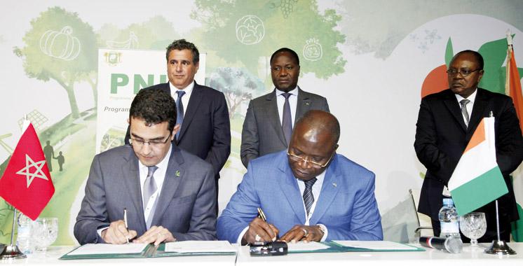 Conventions, accords-cadres... Le modèle agricole marocain appelé  à la rescousse