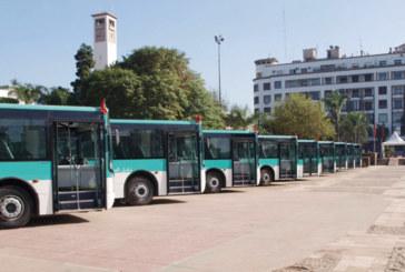 Pour pallier l'arrêt du tramway de Casablanca : M'dina Bus prend le relais