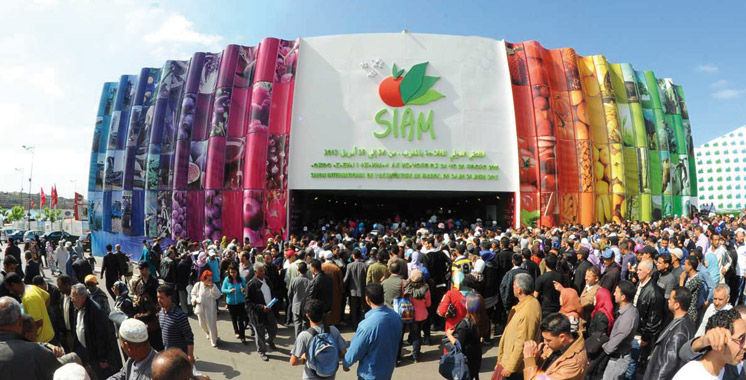 Salon international de l'agriculture au Maroc 2016: Une belle édition !