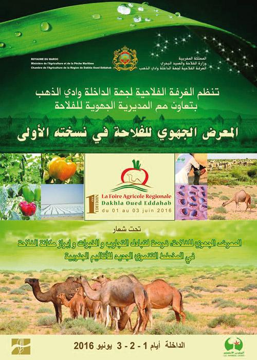Dakhla-foire-regionale-agricole-1