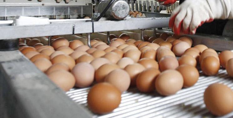 Journée nationale de l'œuf: Le Marocain consomme 140 œufs par an