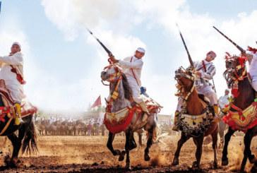 17ème édition du Prix Hassan II de Tbourida: Spectacles, compétitions et prix