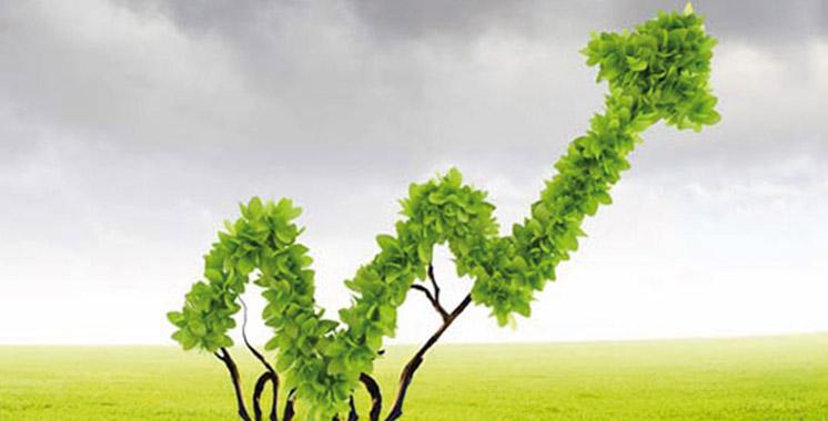 croissance-Plan-Maroc-Vert-Agriculture