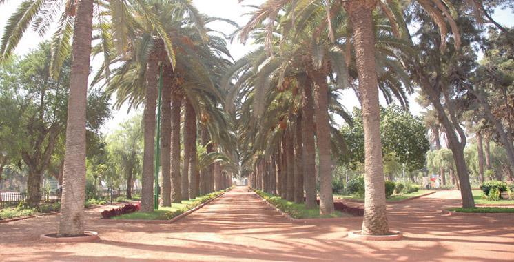 Préservation des espaces verts à Casablanca: «Tous au parc» est de retour
