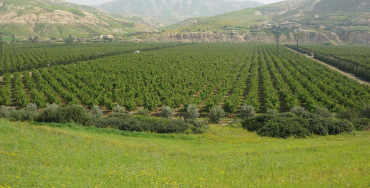 Gestion durable des terres: Coup d'envoi d'un projet multinational à Agadir